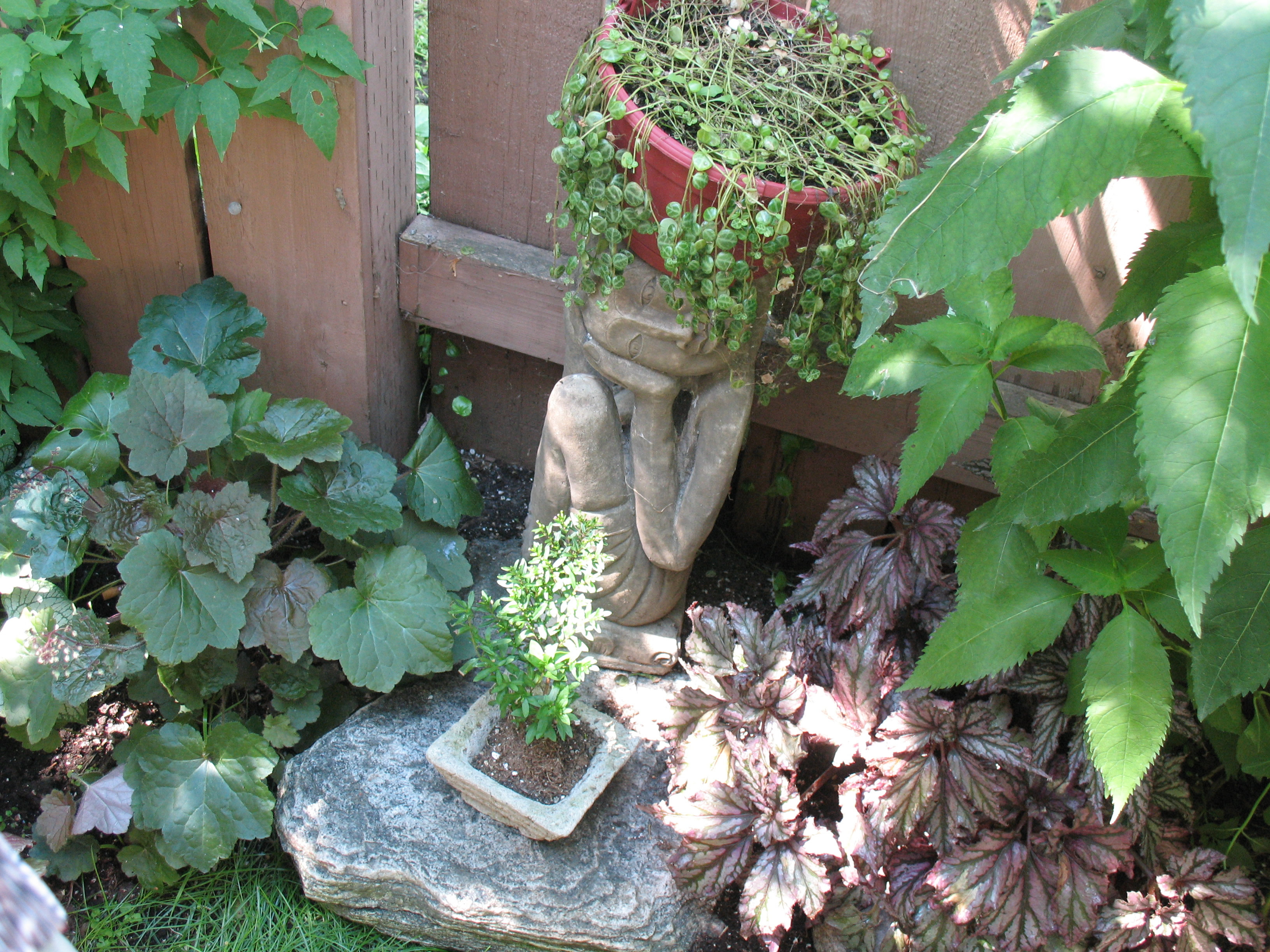 Gloria and Ken's lovely garden